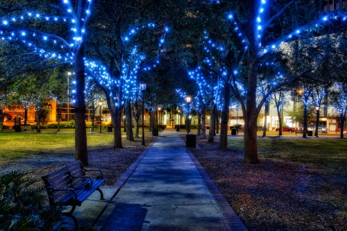 Tampa-Christmas-Lights